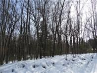 Home for sale: Lot 2 Rockie Rd., Fall Creek, WI 54742