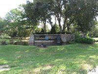 Home for sale: 0 Warm Wind Way, Weeki Wachee, FL 34613