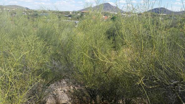 45### N. 8th Pl., New River, AZ 85087 Photo 9