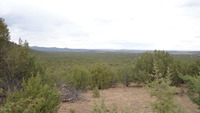 Home for sale: Wwr Lot 1093, Seligman, AZ 86337