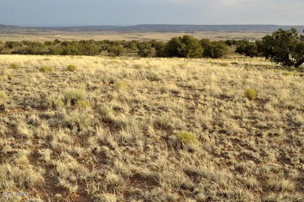 297 Woodridge Ranch, Concho, AZ 85924 Photo 10