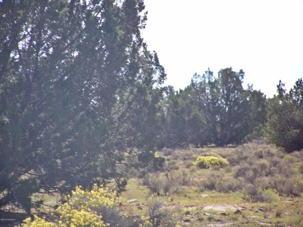 9262 W. Bandera Pass, Williams, AZ 86046 Photo 3