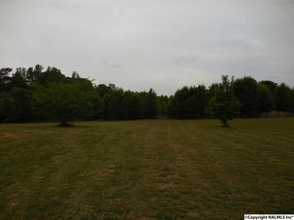 1516 Ready Section Rd., Hazel Green, AL 35750 Photo 36