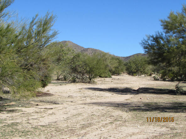 13420 N. Wild Burro, Marana, AZ 85658 Photo 8
