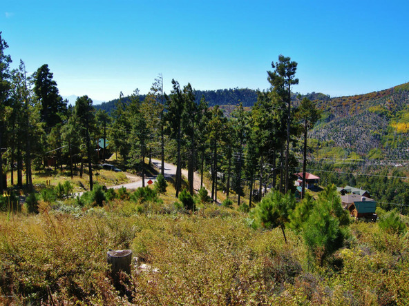 12717 N. Upper Loma Linda, Mount Lemmon, AZ 85619 Photo 11