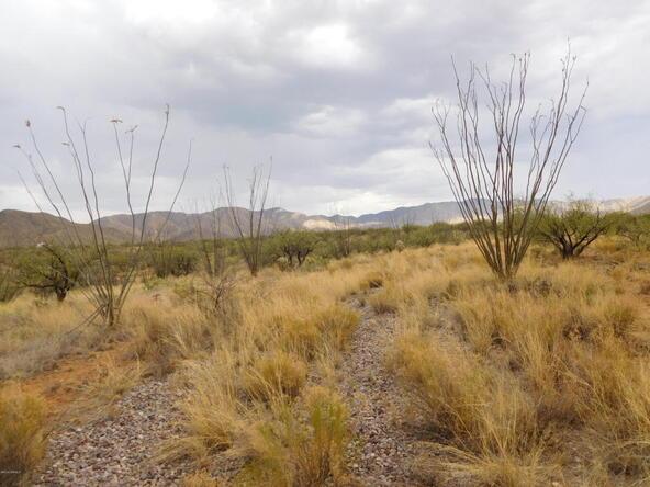 16705 S. Sierrita Mountain, Tucson, AZ 85736 Photo 13