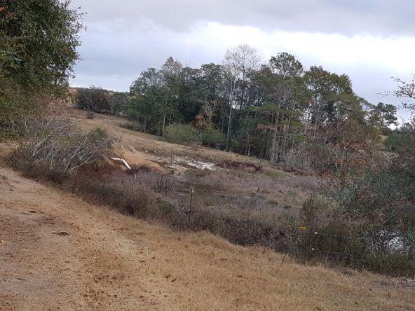 279 County Rd. 469, Kinston, AL 36453 Photo 43