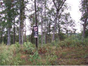 50 County Rd. 309, Crane Hill, AL 35053 Photo 3