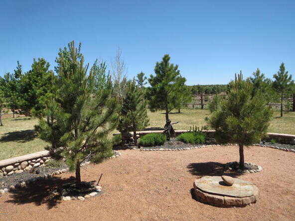 2295 Bison Ranch Trail, Overgaard, AZ 85933 Photo 58