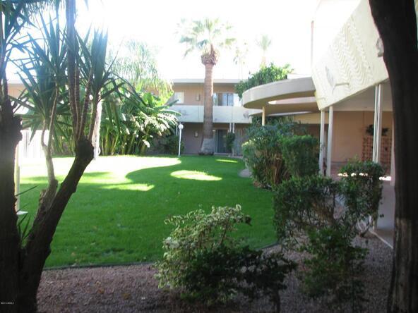 6824 E. 2nd St., Scottsdale, AZ 85251 Photo 4
