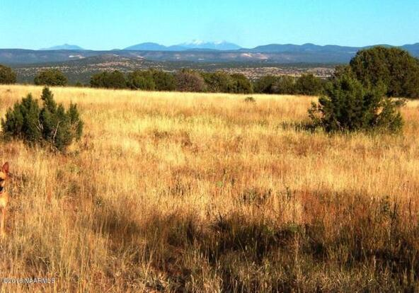 130 Bunny View, Ash Fork, AZ 86320 Photo 1