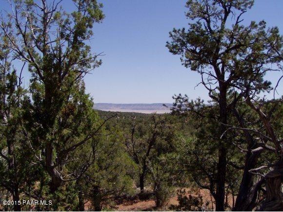 1024 Sierra Verde Ranch, Seligman, AZ 86337 Photo 1