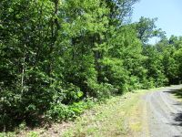 Home for sale: Trail's. End Rd., Little Switzerland, NC 28749