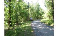 Home for sale: 00 Hickory Cove Rd., Jasper, GA 30143