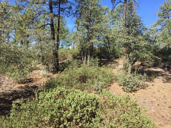 602 S. Pine Strm Stream, Payson, AZ 85541 Photo 11
