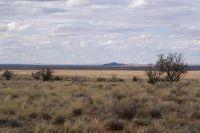 Home for sale: 8027 Dawn Star Trail, Snowflake, AZ 85937