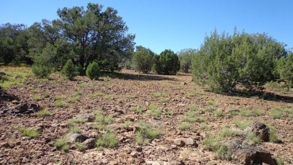 514 Westwood Ranch Lot 514, Seligman, AZ 86337 Photo 13