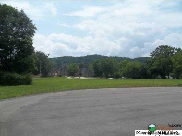 3 Carlton Rd., Scottsboro, AL 35769 Photo 7