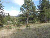 Home for sale: 69 Molly Kathleen Dr., Cripple Creek, CO 80813
