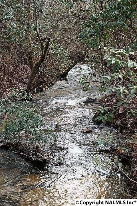 493 Cove Rd., Mentone, AL 35984 Photo 44