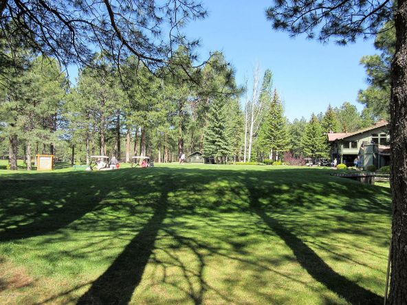 4651 Buck Springs Rd., Pinetop, AZ 85935 Photo 2