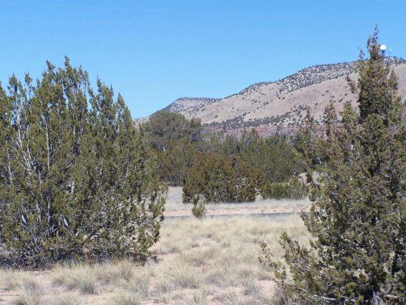 27145 W. Fort Rock Rd., Seligman, AZ 86337 Photo 10