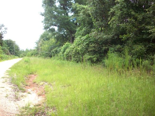 100 Rabbit Run, Atmore, AL 36502 Photo 6