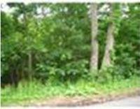 Home for sale: 29 Fairview Park Rd.,, Sturbridge, MA 01566