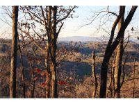 Home for sale: 404 S.E. Laurel Mountain Trail, Saluda, NC 28773