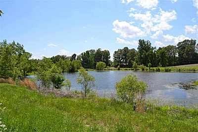 87 Green Valley Rd., Trenton, TN 38382 Photo 12