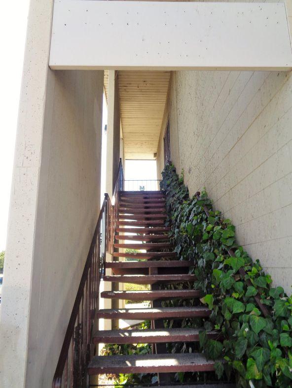 3825 N. Blackstone Avenue, Fresno, CA 93726 Photo 3