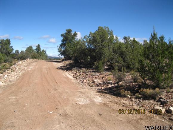 00 N. Willows Ranch Rd., Kingman, AZ 86401 Photo 5