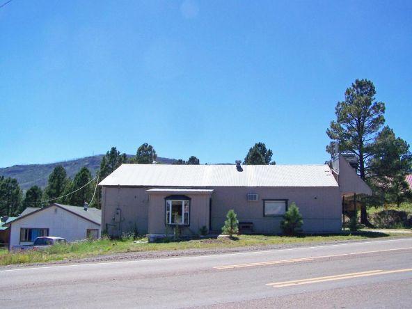 24680 Hwy. 180, Alpine, AZ 85920 Photo 3