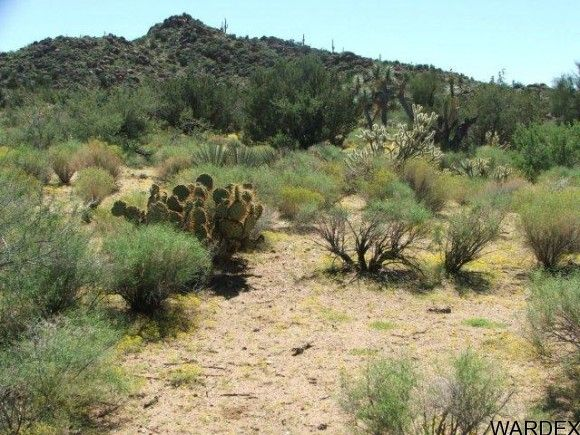 3578-A E. Desert Willow Dr., Yucca, AZ 86438 Photo 4