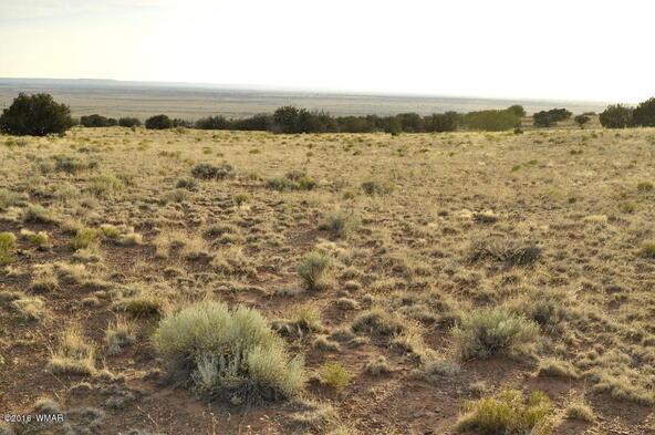 297 Woodridge Ranch, Concho, AZ 85924 Photo 8
