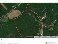 Home for sale: 1438 Chestnut Hill, Eva, TN 38333