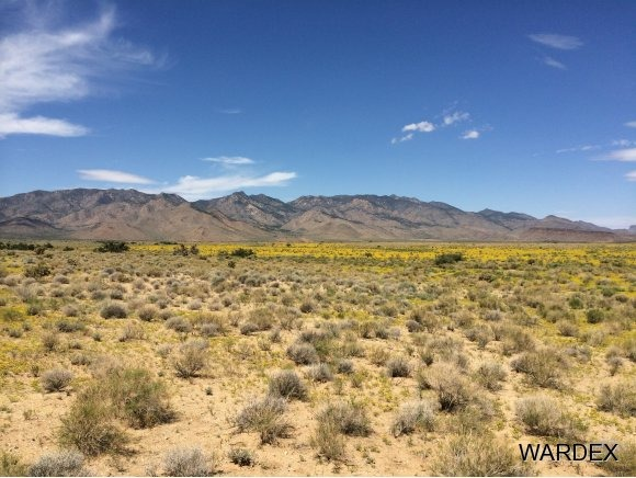 33225140 Land, Kingman, AZ 86409 Photo 5