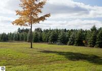 Home for sale: 0014 Lipp Farm Rd., Benzonia, MI 49616