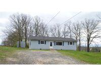 Home for sale: 1675 Neff Rd., Saint Clair, MO 63077