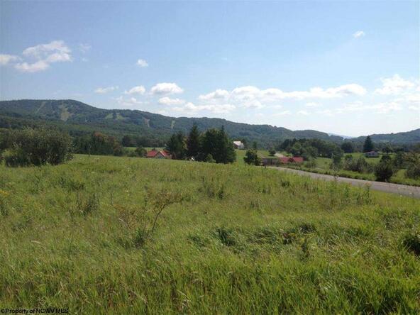 24 Canaan Vista Cir., Davis, WV 26260 Photo 9