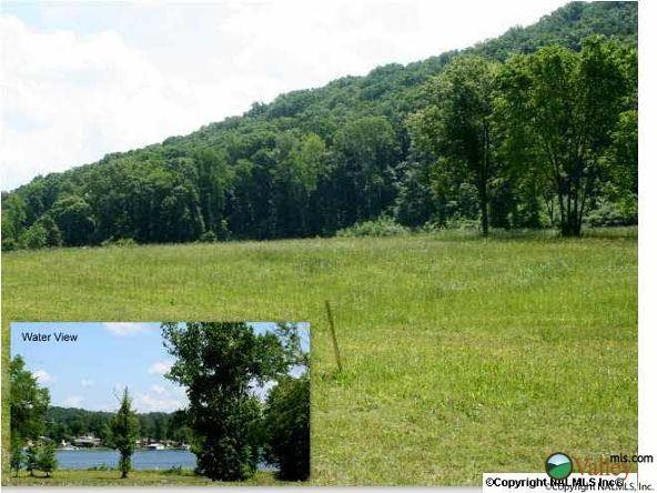 101 Lake Creek Dr., Guntersville, AL 35976 Photo 21