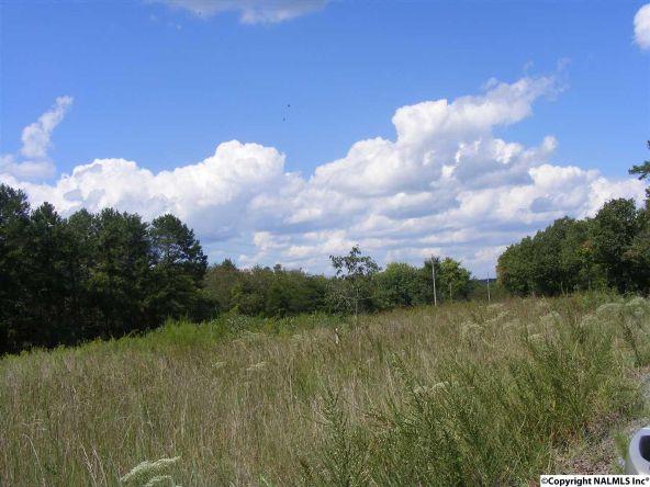 1030 County Rd. 664, Valley Head, AL 35989 Photo 1