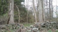 Home for sale: Marshall Rd., Pleasant Valley, NY 12538