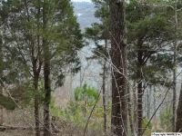 Home for sale: 84 Monte Sano Dr., Scottsboro, AL 35769