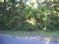 Home for sale: 1922 N. Crooked Branch Dr., Lecanto, FL 34461