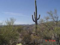 Home for sale: 0.5 Acres S. Matala Way, Black Canyon City, AZ 85324