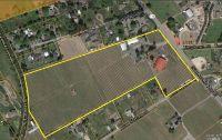 Home for sale: 5566 N. Gravenstein Hwy., Forestville, CA 95436