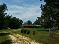 Home for sale: 500 Big Woods Rd., Violet Hill, AR 72584
