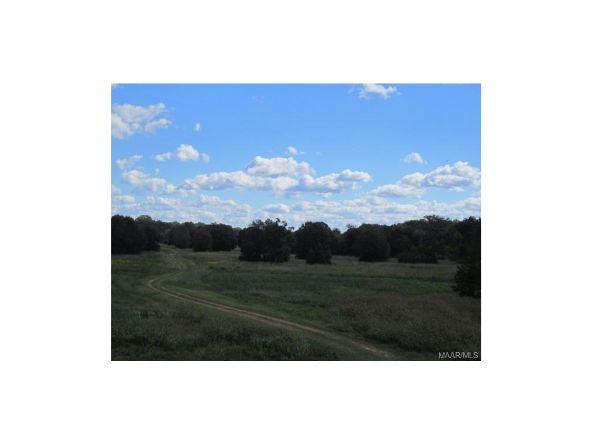 279 Tiger Oak Dr. Rd., Pike Road, AL 36064 Photo 5