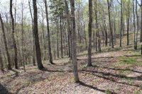 Home for sale: 5-Lot Cumberland Shores, Monticello, KY 42633